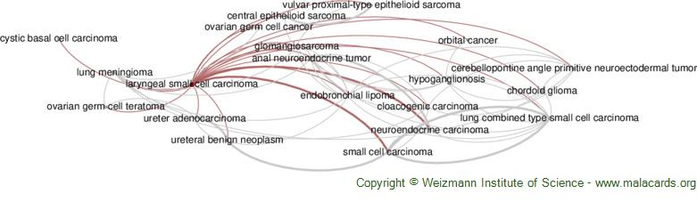 Diseases related to Laryngeal Small Cell Carcinoma