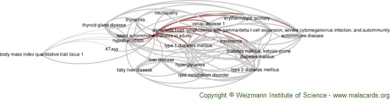 Diseases related to Latent Autoimmune Diabetes in Adults