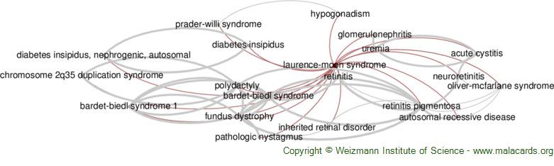 Diseases related to Laurence-Moon Syndrome