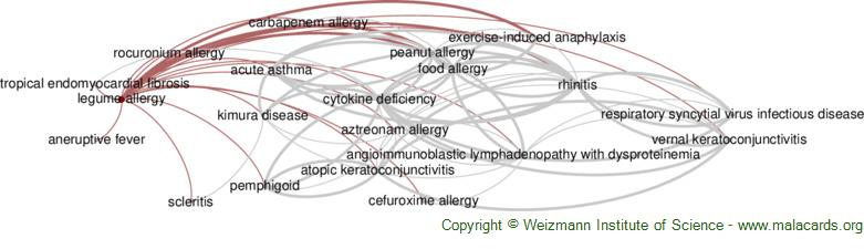 Diseases related to Legume Allergy