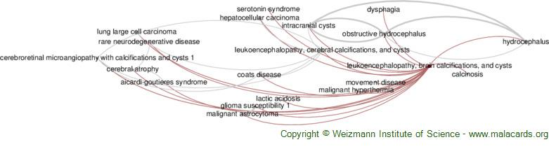 Diseases related to Leukoencephalopathy, Brain Calcifications, and Cysts
