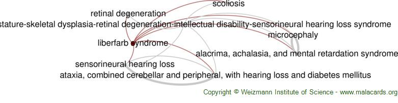 Diseases related to Liberfarb Syndrome