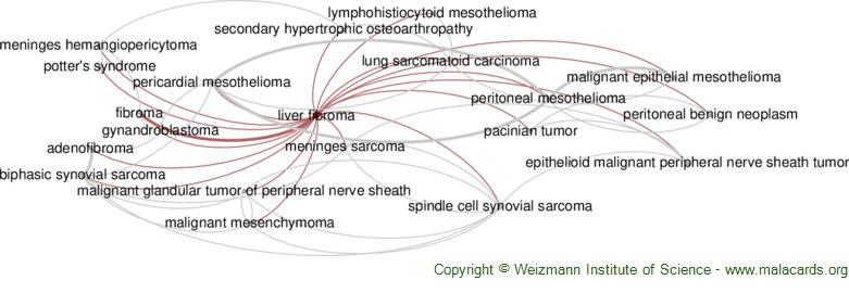 Diseases related to Liver Fibroma