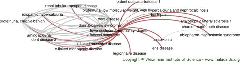 Diseases related to Lowe Oculocerebrorenal Syndrome