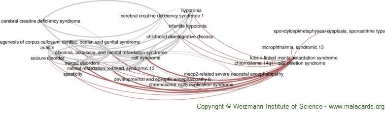 Diseases related to Lubs X-Linked Mental Retardation Syndrome