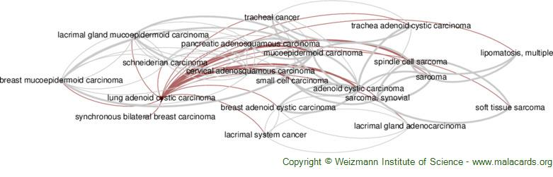 Diseases related to Lung Adenoid Cystic Carcinoma