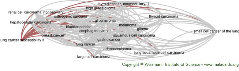 Diseases related to Lung Cancer Susceptibility 3
