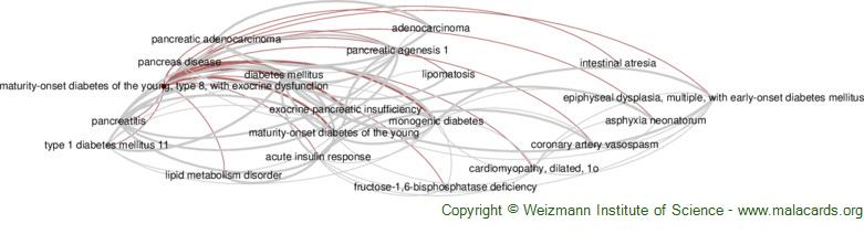 Diseases related to Maturity-Onset Diabetes of the Young, Type 8, with Exocrine Dysfunction