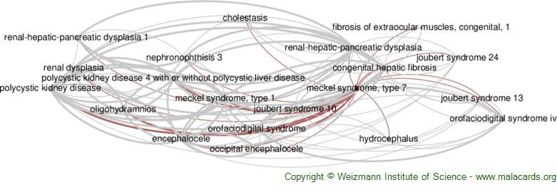 Diseases related to Meckel Syndrome, Type 7