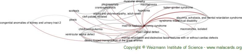Diseases related to Med13l Haploinsufficiency Syndrome