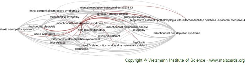 Diseases related to Mitochondrial Dna Depletion Syndrome 3