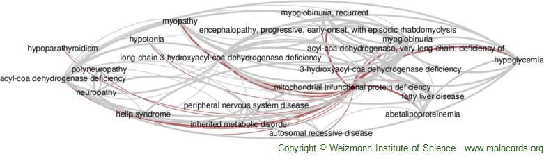 Diseases related to Mitochondrial Trifunctional Protein Deficiency