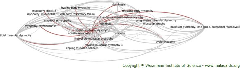 Diseases related to Miyoshi Muscular Dystrophy