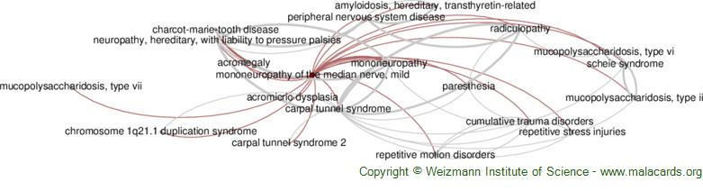 Diseases related to Mononeuropathy of the Median Nerve, Mild