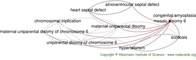 Diseases related to Mosaic Trisomy 6