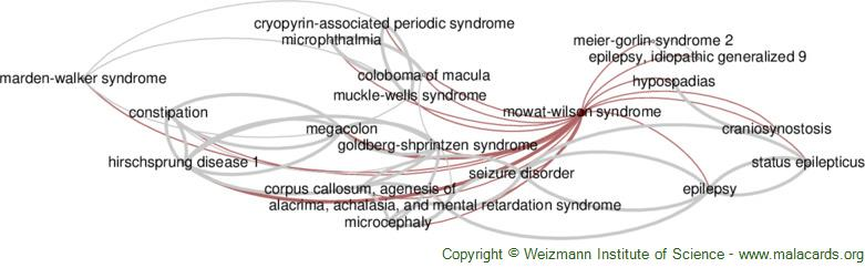 Diseases related to Mowat-Wilson Syndrome