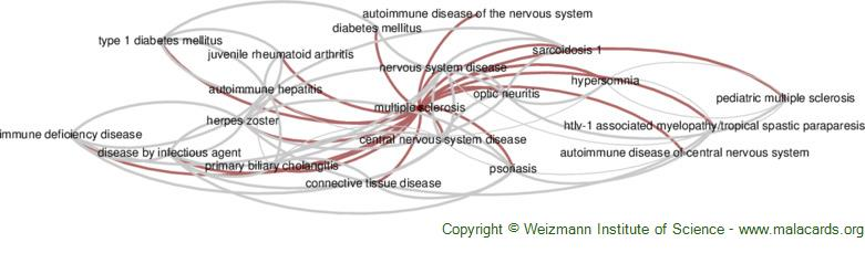 Diseases related to Multiple Sclerosis