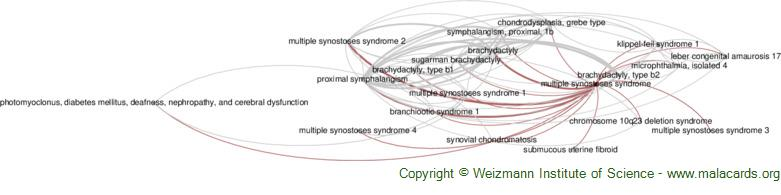 Diseases related to Multiple Synostoses Syndrome