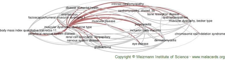 Diseases related to Muscular Dystrophy, Duchenne Type