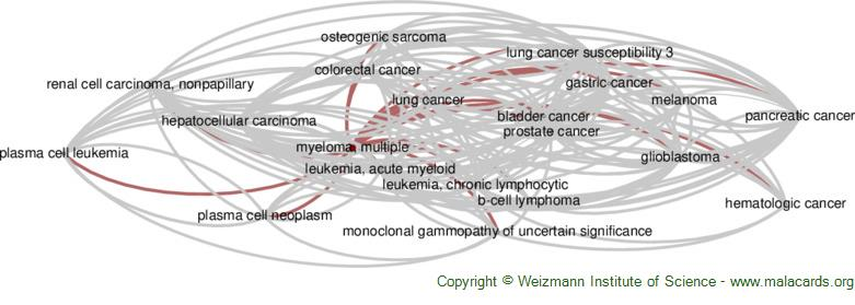 Diseases related to Myeloma, Multiple