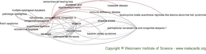 Diseases related to Nail Disorder, Nonsyndromic Congenital, 3