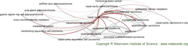 Diseases related to Nasal Cavity Cancer