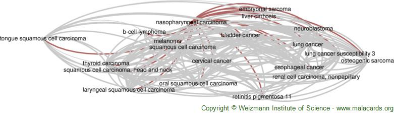 Diseases related to Nasopharyngeal Carcinoma