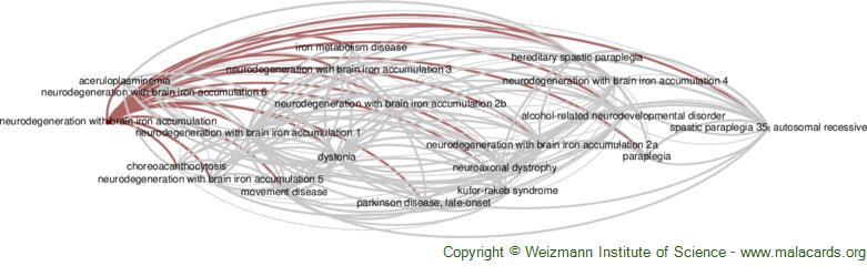 Diseases related to Neurodegeneration with Brain Iron Accumulation