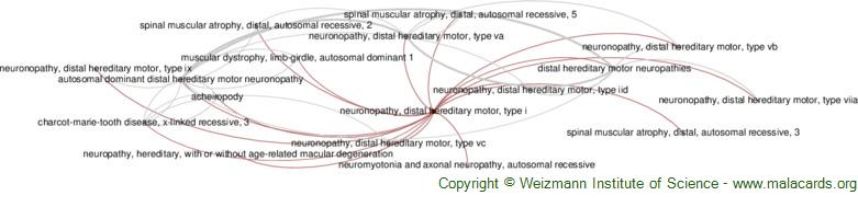Diseases related to Neuronopathy, Distal Hereditary Motor, Type I