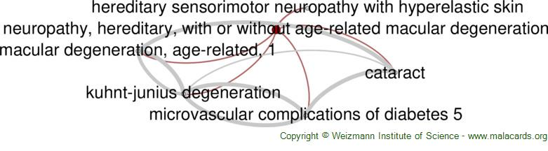 Diseases related to Neuropathy, Hereditary, with or Without Age-Related Macular Degeneration