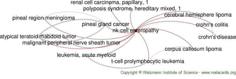 Diseases related to Nk-Cell Enteropathy