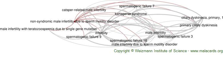 Diseases related to Non-Syndromic Male Infertility Due to Sperm Motility Disorder