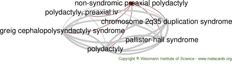 Diseases related to Non-Syndromic Preaxial Polydactyly