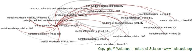 Diseases related to Non-Syndromic X-Linked Intellectual Disability