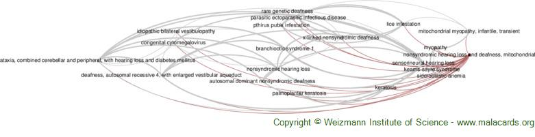 Diseases related to Nonsyndromic Hearing Loss and Deafness, Mitochondrial