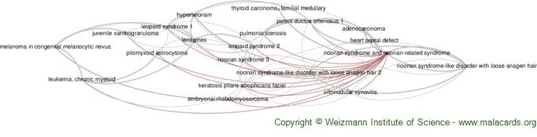 Diseases related to Noonan Syndrome and Noonan-Related Syndrome