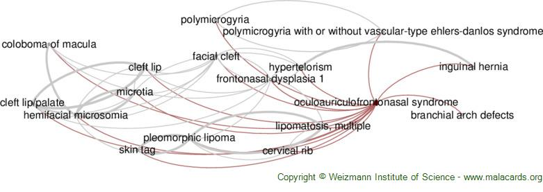 Diseases related to Oculoauriculofrontonasal Syndrome