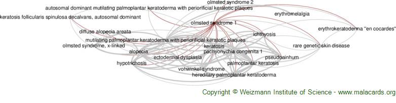 Diseases related to Olmsted Syndrome 1