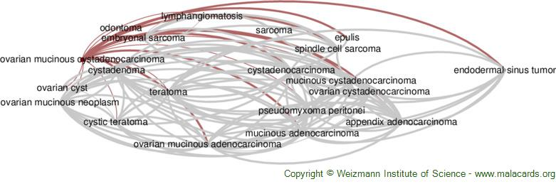 Diseases related to Ovarian Mucinous Cystadenocarcinoma