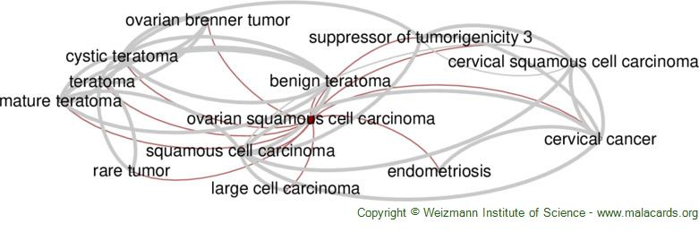 Diseases related to Ovarian Squamous Cell Carcinoma
