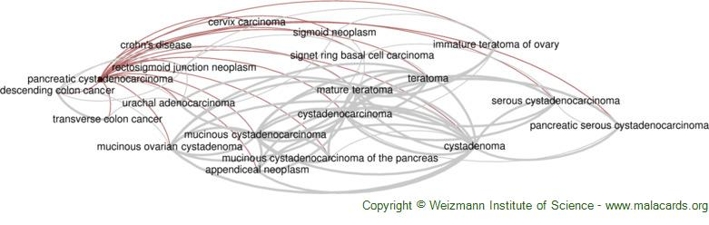 Diseases related to Pancreatic Cystadenocarcinoma