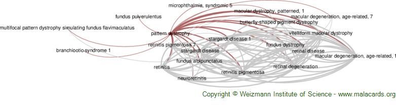 Diseases related to Pattern Dystrophy