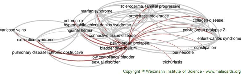 Diseases related to Pelvic Organ Prolapse