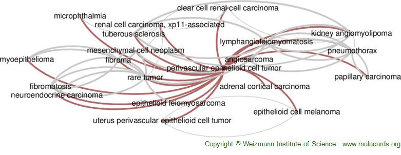 Diseases related to Perivascular Epithelioid Cell Tumor
