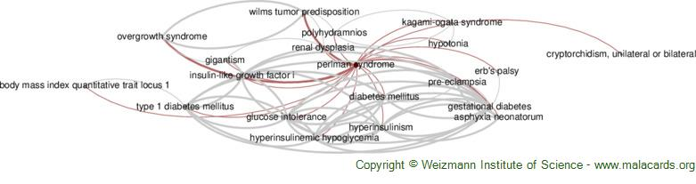 Diseases related to Perlman Syndrome