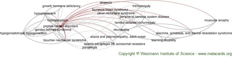 Diseases related to Pnpla6-Related Disorders