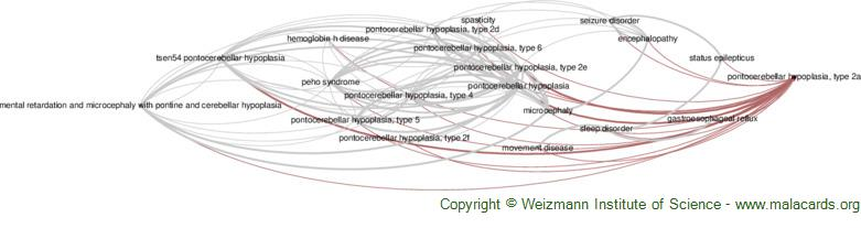 Diseases related to Pontocerebellar Hypoplasia, Type 2a