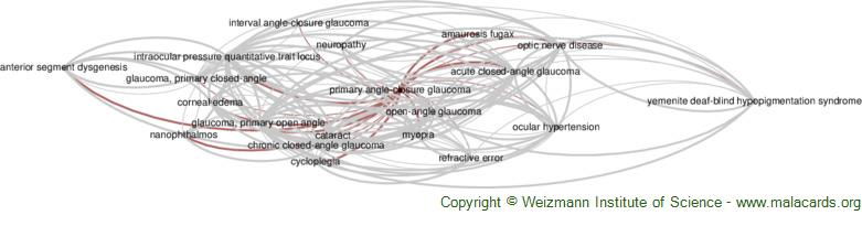 Diseases related to Primary Angle-Closure Glaucoma