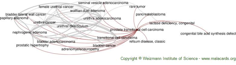 Diseases related to Prostate Transitional Cell Carcinoma