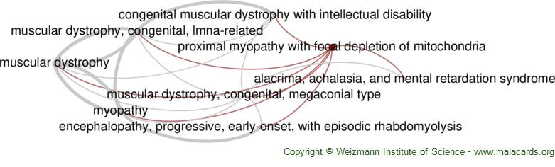 Diseases related to Proximal Myopathy with Focal Depletion of Mitochondria